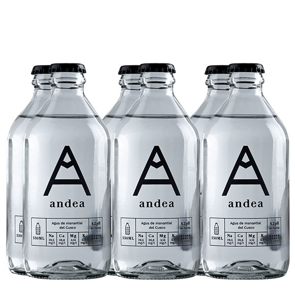 andean con gas 330 ml x 6 botellas