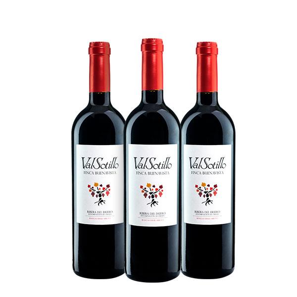 Valsotillo Finca Buena Vista x 3 botellas
