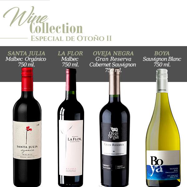 wine collection especial de otoño II
