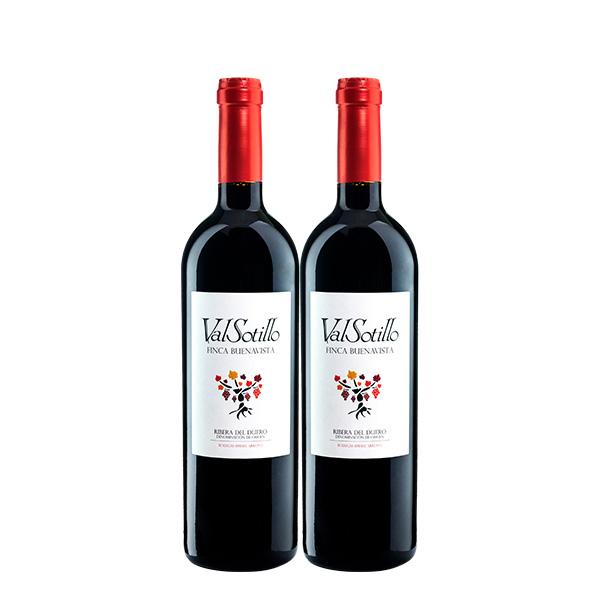 Valsotillo Finca Buena Vista x 2 botellas